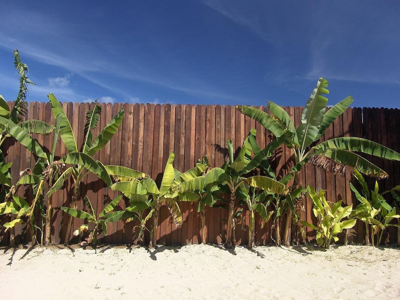 beach-1029007_1280.jpg