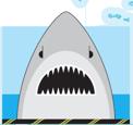 2021 Map Shark